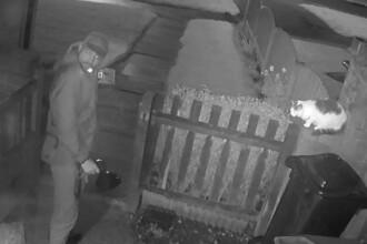 VIDEO şocant: momentul în care un bărbat își pune câinele să ucidă o pisică