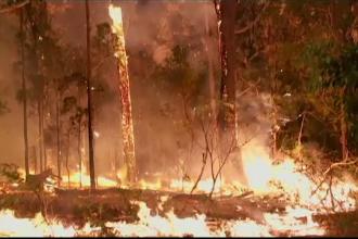 Incendii uriaşe, în toată Australia. Scene parcă desprinse din