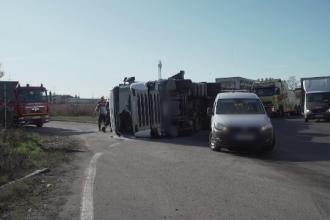 Misiune contra-cronometru pentru salvarea unor porci, după un accident în Prahova