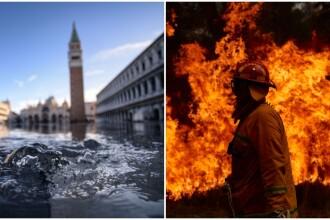 Ciumă, incendii devastatoare și inundații: dezastrele provocate de schimbările climatice