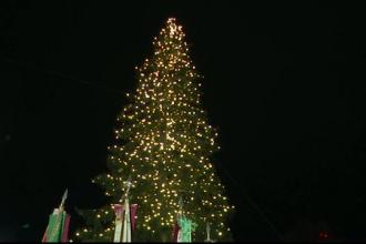 Celebrul târg vienez de Crăciun s-a deschis oficial. Cât măsoară cel mai înalt brad