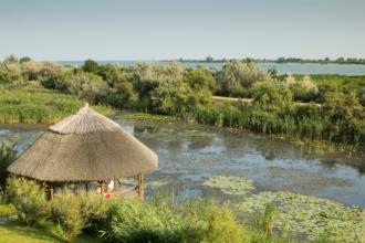 Turiști și localnici amendați în Delta Dunării. Ce au lăsat în urma lor a fost îngrozitor
