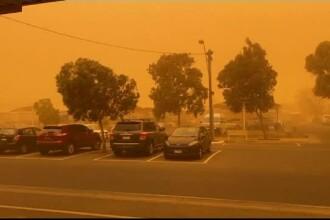 Imagini apocaliptice în Australia. Peste 1 milion de hectare au fost distruse de incendii