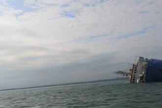 O navă cu 14.600 de oi la bord s-a scufundat în Portul Midia. VIDEO