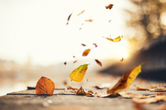 Vreme caldă pentru luna decembrie. Zona în care se vor atinge maxime de 11 grade