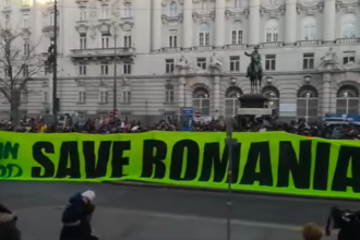Protest masiv organizat în Austria, pentru salvarea pădurilor din România. VIDEO