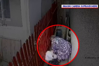 Două surori pensionare din Galați au răpit căţelul vecinilor pentru că le deranja lătratul lui