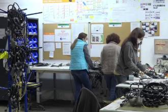 Firmele din România care sfidează criza și fac profituri record. Care sunt secretele lor