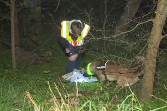 Canibal prins în Germania de către câinii polițiști. Cum și-a racolat victima pe care a mâncat-o