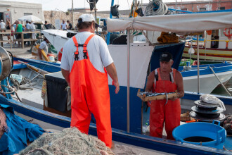 """Pescarii britanici, dezamăgiţi de acordul post-Brexit. Vor """"o ruptură mai definitivă"""""""