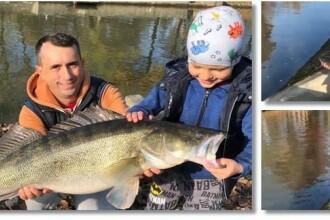 Un băiat de 10 ani a prins un șalău de 10 kilograme, pe Bega, în Timișoara. VIDEO