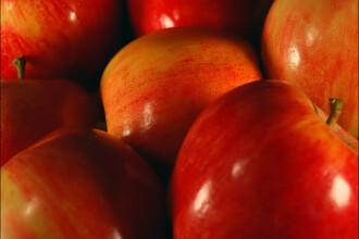 Secretul tineretii pentru regina Elisabeta: sucul de mere