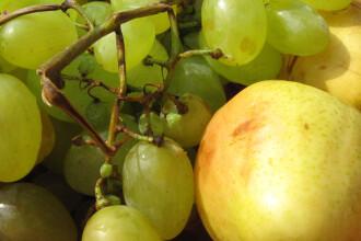 Atentie! Fructe confiate cu probleme, puse la vanzare in Romania