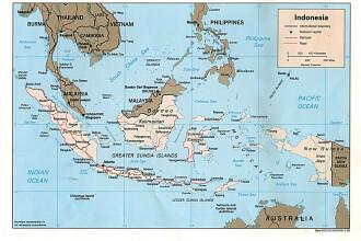 Cutremur cu magnitudinea de 7,1 in estul Indoneziei