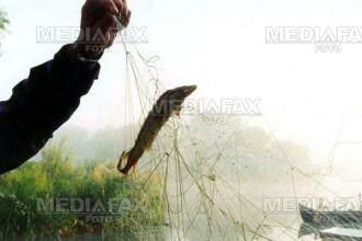 Braconieri din Gorj, prinsi la un lac de langa Turda