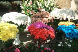 La multi ani, doamnelor! Sa tot fie 8 Martie pentru florarii