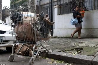 Ucis, mutilat si aruncat intr-un carut de supermarket, in plina strada!