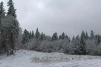 A nins in centrul tarii! Turistii se bucura, autoritatile au de furca