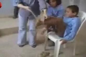 Copii torturati in scoli de profesoarele GROAZEI! VIDEO SOCANT