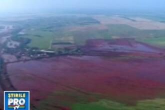Catastrofa ecologica: Deseurile toxice din Ungaria au ajuns in Dunare