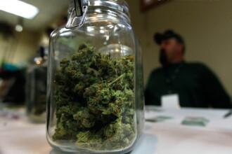 Marijuana, legalizata in Colorado. Cei peste 21 de ani vor putea cumpara intre 24 si 33 de grame