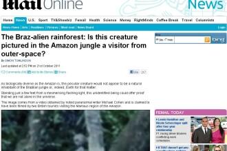 Aparitie inexplicabila in cea mai bine pazita jungla din lume. Armata e mereu in alerta. FOTO