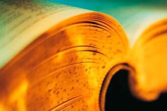 TOP 5 cele mai frecvente greseli din limba romana. Cuvintele pe care le foloseste toata lumea, desi nu exista