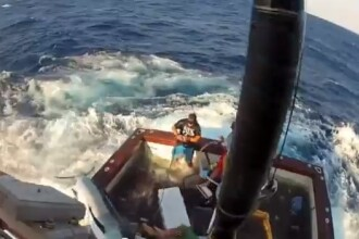 VIDEO. Momentul in care un peste spada de 270 de KILOGRAME sare in barca unor pescari australieni