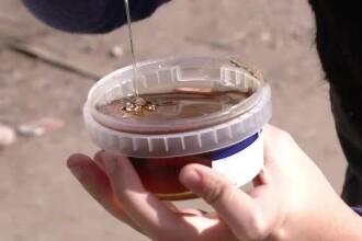 Primele masuri luate in cazul mierii falsificate distribuita saracilor romani, ca ajutor de la UE
