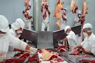 Englezii arata din nou cu degetul spre Romania. Urme de carne de cal ar fi fost gasite in conserve
