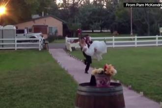 Momentul care a facut ca aceasta nunta sa fie de neuitat. Ce se intampla in momentul in care mirele isi ia sotia in brate