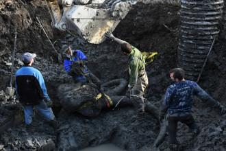 Descoperirea uriasa a unui fermier. Sapa pe camp si a gasit scheletul unui animal urias care a trait in urma cu 15.000 de ani