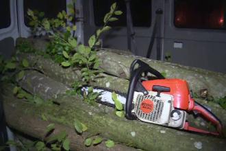 Urmarire cu focuri de arma in Dambovita. Un hot de lemne a fost prins dupa sapte focuri de avertisment