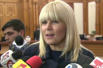 Elena Udrea si povestea gandacului de 10 cm din celula. Ce a spus fostul ministru despre conditiile din arest