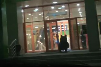 Panica intr-un mall din Rusia. Ce animal periculos s-a plimbat printre rafturile unui magazin. VIDEO