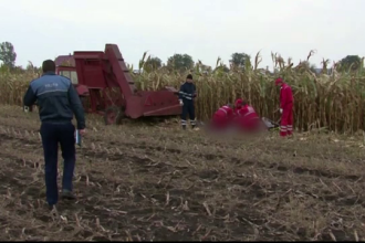 Un barbat din Suceava a murit intr-un accident teribil, la cules de porumb. O clipa de neatentie l-a costat viata