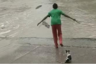 O femeie din Australia, filmata in timp ce pune pe fuga un crocodil cu un... papuc. VIDEO