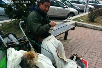 Un italian a ajuns sa cerseasca in Romania.