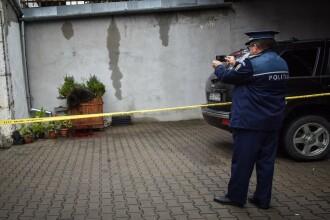 Asociatiile pentru protectia animalelor reactioneaza dupa uciderea ursului din Sibiu. Ce au povestit martorii