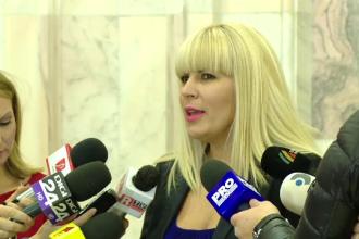 Elena Udrea a consultat noul dosar, cu 13 volume, a cate 200 de pagini, in care este acuzata de coruptie