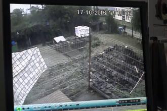 Femeie din Baia Mare filmata in timp ce fura un catel dintr-un adapost pentru animale. Motivul pentru care a facut asta