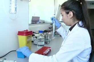 Cercetătorii din Timişoara lucrează la primul vaccin împotriva alergiei la ambrozie
