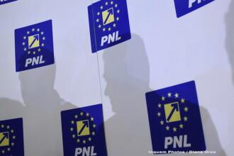 """PNL cere remanierea miniștrilor """"penali"""": Luăm în calcul inițierea unei moțiuni de cenzură"""