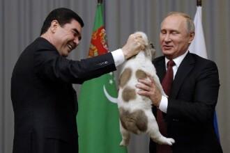 Putin a primit cadou un pui de ciobănesc din Asia Centrală de la președintele turkmen. VIDEO