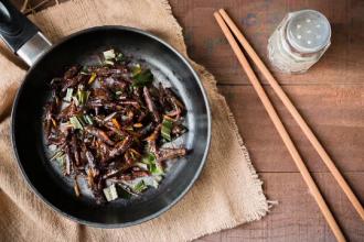 Insectele, o obişnuinţă în meniurile restaurantelor din România. Resursele planetei, pe cale de dispariţie