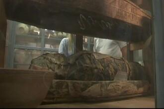 O mumie rătăcită a fost găsită în depozitul unui muzeu, după zeci de ani