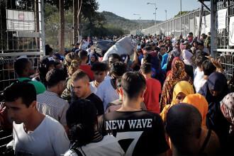 Teroare pe o insulă din Europa. Bande islamiste au început să impună legea șaria