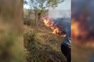 Incendiu violent în Caraș Severin. Există riscul ca flăcările să ajungă la o pădure