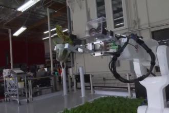 Lipsa forței de muncă în agricultură l-a determinat pe un fermier să construiască roboți