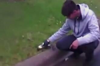 Un adolescent a resuscitat o veveriță pe care o lovise cu mașina
